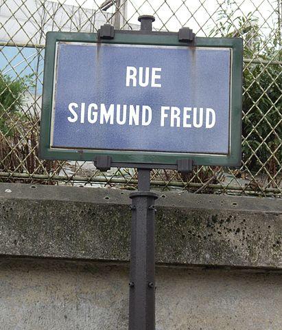 411px-Rue_Sigmund-Freud,_Paris_19_(1)